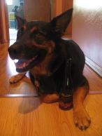 Dante likes sake