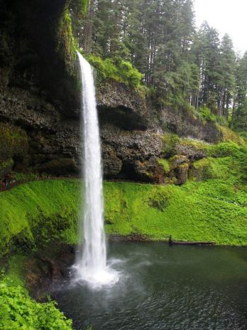 Silver Falls State Park | An adventure from Evergreen Escapes: Wine & Waterfalls