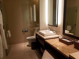 Anya bathroom